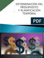 Determinación Del Presupuesto y Planificación Temporal