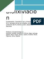 biolixiviacin-140820190924-phpapp01