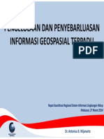 Informasi Geospasial Indonesia