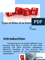 Types of Risk of an Entrepreneur