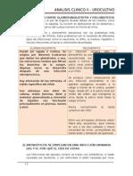 Diferencias Entre Glomerunolefritis y Pielonefritis