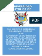 Tamaño y Localizacion de Planta ..I FASE