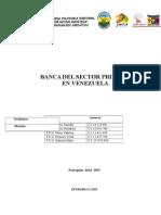 4. Banca Del Sector Privado