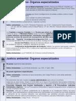 Instituciones Especializadas Ambientales-comparativo