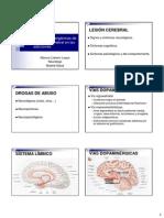 Alt Orgánicas de La Función Cerebral en Adicciones