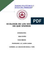 Universidadgsdfgfsdgsdfg Politécnica y Artística Del Paraguay