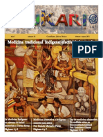 Medicina tradicional indigena