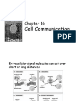 Chapter Sixteen Cell Signaling