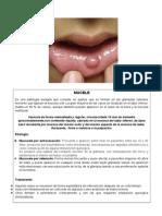 Patologia Definitivo