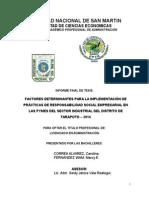 Informe Final Corregido 14-04-15 Ok