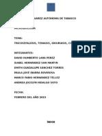 Microbiologia Trabajo de Parasitos