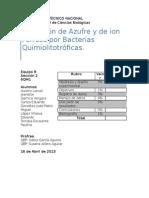 Práctica . Quimiolitotrofía