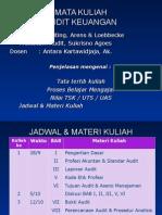 Slide Auditing 2011