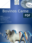 Bovinos Carne