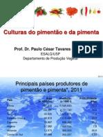 Culturas Do Pimentao e Da Pimenta_2013