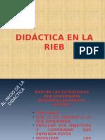 Didactica en La Rieb
