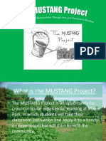 the mustang project