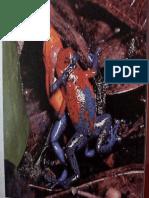 5.selección sexual.pdf