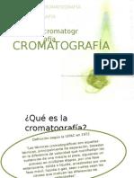 Cromatografia Análisis Instrumental