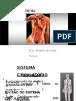 (343028439) Sistema Circulatório