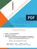 Fluor y Fluorosis