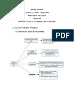 3 Informe Analisis de Procesos (1)