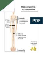 Cómo tomar las medidas.pdf