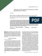 Vascularidad Medular Normal y Patologica BIG REVIEW