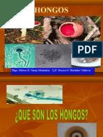 6°+SESIÓN-INTRODUCCIÓN+HONGOS.ppt (1)