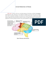 Electrical Behaviour of Brain