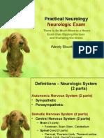 Powerpoint the Neurologic Exam3423