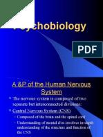 3 Neurobiology