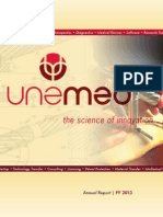 UNeMed Corporation 2013 Annual Report