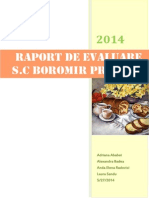 Raport evaluare Boromir SA Buzau.pdf