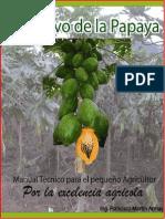 instructivotecnicoparaelagricultordelapapaya-120912122219-phpapp02