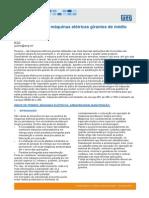 Armazenagem de Maquinas Eletricas Girantes de Medio Porte Artigo Tecnico Portugues Br