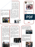 TRIPTICO VALORES PNP.doc