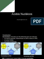Biologia PPT - Ácidos Nucléicos.ppt