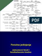 Polifenoli2010