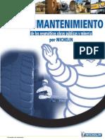 Guide_Maintenance_Esp_04.pdf