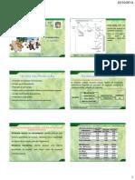 Teoria da Producao.pdf