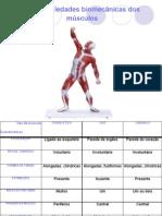 Propriedades Biomecanicas dos Musculos