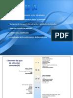 Actividad_de_agua.pdf