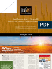 Wheat Preparation - Cleaning, Conditioning & colour sorting