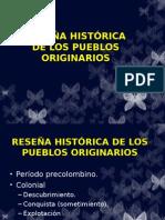 Historia Pueblos Indígenas