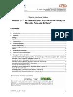 DETERMINANTES_SOCIALES_DE_LA_SALUD_Y_LA_ATENCION_PRIMARIA_DE_SALUD.pdf