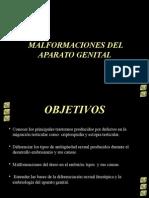 Malformaciones Del Aparato Genital.