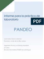 Práctica de Laboratorio_Pandeo