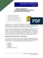 Executive Briefing 5 - KAM Informal Networks - 11 Feb 10 v2