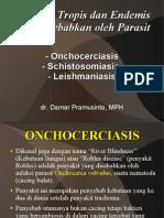 Onchocerciasis-Schistosomiasis-Leishmaniasis.pdf